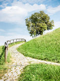 Footpath. Old cobblestone footpath at a park in  vienna - nice background Royalty Free Stock Images