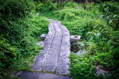 Footpath. A quiet stone path in the park Royalty Free Stock Image