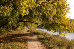 footpath Images stock