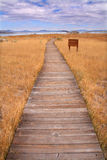 Footpath. Path through field towards Mono Lake, California Stock Photo