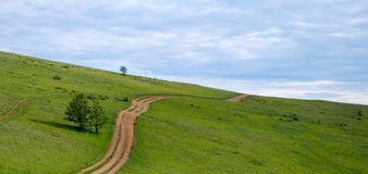 Footpath. In the middle of meadow. Side of the Lake Baikal Stock Image