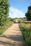 footpath Стоковое Фото