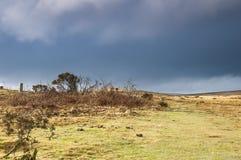 Footpath across Dartmoor Stock Photos