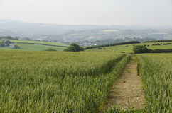 Footpath across farmland. Stock Images