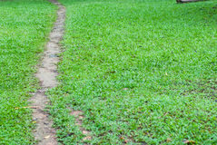 Footpath across the field Stock Photo