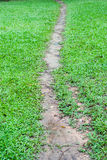 Footpath across the field Royalty Free Stock Photos