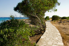 Footpath along the promenade by the sea Stock Image