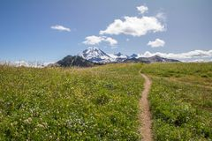 Footpath along Skyline Divide leads to views of Mt Baker. Spectacular ridge-walking path draws the eye along Skyline Divide to awesome views of snow-capped Mt Stock Photos