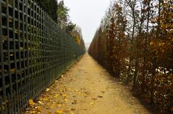 Footpath in autumn Stock Photography