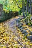 Footpath  in autumn park Stock Photos