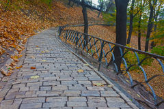Footpath in autumn park. Kiev Stock Photo