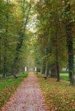 Footpath in autumn park Stock Photo