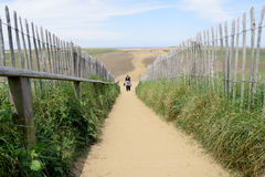Footpath on the beach Royalty Free Stock Photography