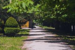 A footpath in beautiful green park. A footpath in a beautiful green park Royalty Free Stock Image
