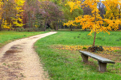 Footpath and bench in autumnal park. Royalty Free Stock Photography