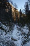 Footpath at Black lak. E, Julian Alps Stock Images