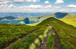 Footpath through Borzhava mountain ridge in summer. Group of tourists following the path. lovely landscape and travel concept Royalty Free Stock Photos