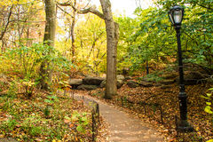 A footpath in the Central Park Stock Photo
