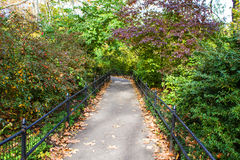 A footpath in the Central Park Stock Images