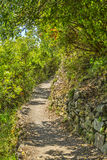 Footpath in Cinque Terre National Park. Beautiful hiking footpath connecting the traditional villages from Cinque Terre National Park on the Italian Riviera Royalty Free Stock Photography