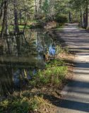 Footpath in a Cypress Swamp Stock Photos