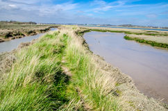 Footpath Deben Estuary Royalty Free Stock Images