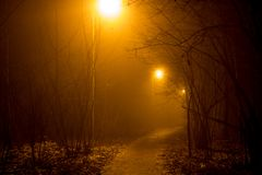 A footpath and a dense fog at night royalty free stock images
