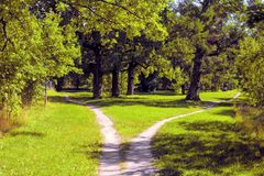 The footpath diverges in different directions in the Park. Hiking trail diverges in different directions in the park royalty free stock photo