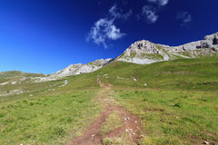 Footpath in Dolomites Royalty Free Stock Photography