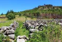 Footpath dry stone walled area in countryside. Footpath in countryside through a dry stone walled area on the hillside above Loch Doon in southwest Scotland with Royalty Free Stock Photo