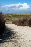 Footpath in dunes, Borkum Island Royalty Free Stock Photo