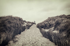 Footpath through dunes Royalty Free Stock Images