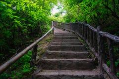 Footpath in Erawan waterfall Royalty Free Stock Images