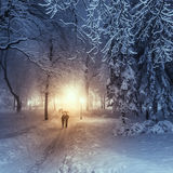 Footpath in a fabulous winter city park Royalty Free Stock Image