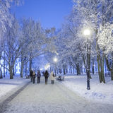 Footpath in a fabulous winter city park. Royalty Free Stock Photography