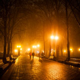Footpath in a fabulous winter city park. Stock Photography
