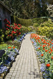 Footpath and Flowers Stock Images