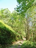 Footpath by forest of Asturias. Detail of footpath, into wooded area. Asturias. Spain Stock Photos
