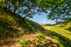 Footpath through the forest on mountain ridge. Fine summer weather in mountain landscape Stock Images