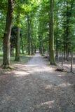 Footpath in the forest. Footpath near Konopiste castle in Czech Republic royalty free stock image