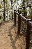 Footpath through the forest next to a handrail Royalty Free Stock Image