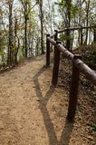Footpath through the forest next to a handrail Royalty Free Stock Photography