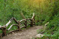 Footpath in the forest. Footpath with wooden fence in the forest Royalty Free Stock Image