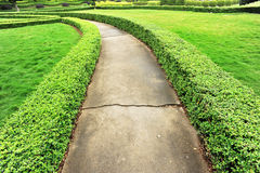 Footpath at garden Royalty Free Stock Photography