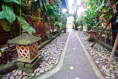 Footpath in garden Royalty Free Stock Images