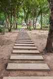 Footpath in garden Royalty Free Stock Photography