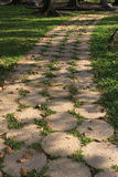 Footpath in the garden. Detail of footpath in the garden Royalty Free Stock Photo