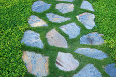 Footpath in the garden. Detail of footpath in the garden Royalty Free Stock Photos