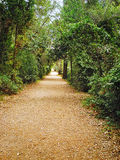 Footpath in the garden Stock Image