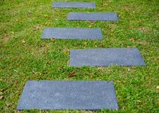 Footpath on grass Royalty Free Stock Photos